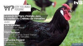 VYP – La poule du Mans s'installe dans le volailler du château de Versailles (1e partie)