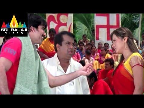 Krishna Movie Raviteja Brahmi and Sunil Comedy  Ravi Teja, Trisha  Sri Balaji Video