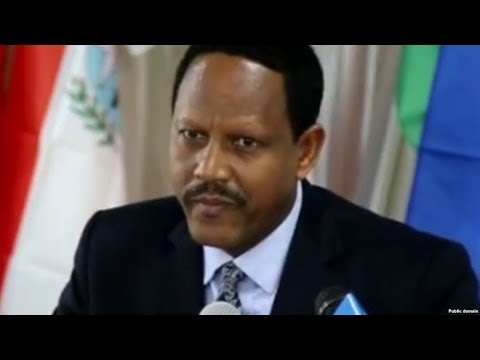 Ethiopia: Interview With Dr Negeri Lencho -Minister of Communications