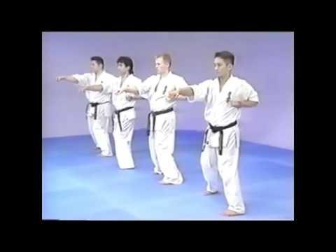 Sanchin Dachi + Seiken Chudan Gyaku Tsuki
