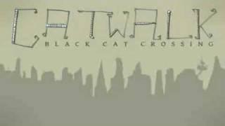 Черная кошка перебежала дорогу.AVI
