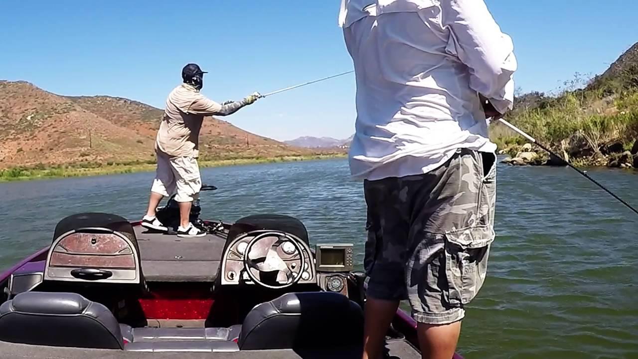 Lake hodges bass fishing w a 8lb 11oz pig july 16 2016 for Lake hodges fishing report