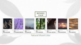 [아모스프로페셔널] 자연을 포착한 생생한 컬러, 내추럴…