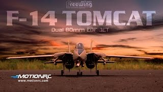 Freewing F-14 Tomcat Twin 80mm EDF Jet - Feature Review and Flight Demo