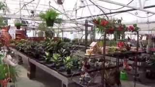 #373 США Аляска Анкоридж Питомник растений и удивительный магазин Bell's Nursery(В этом питомнике цветы и овощи прямо из теплицы, а в магазинчике очень красивые и необычные товары., 2014-08-06T04:10:18.000Z)