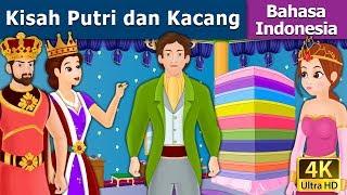 Download Video Kisah Putri dan Kacang | Dongeng anak | Kartun anak | Dongeng Bahasa Indonesia MP3 3GP MP4