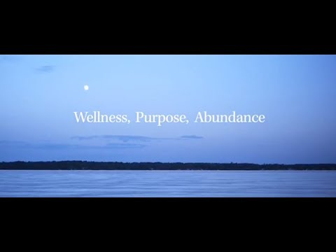Wellness Purpose And Abundance