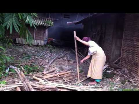 Trip to Semarang, Indonesia- A Local Village Life in Sedayu