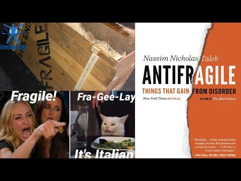 Antifragile, Or Why Being Insulted By Nassim Taleb Can Make You Stronger