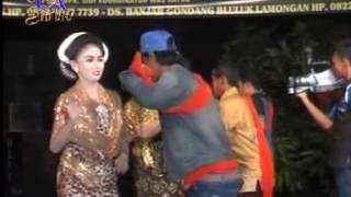 Tayub Pilihan | Perawan Kalimantan - Pesisir Banyuwangi | Margo Laras Live in Majenon