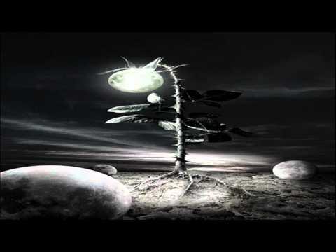 N'to - Ekphrasis (Max Cooper's Svukt Remix)