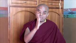 The Life and Teachings of Tulku Urgyen Rinpoche