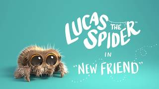Lucas The Spider New Friend