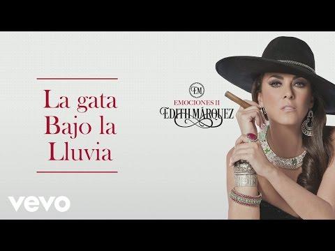 Edith Márquez - La Gata Bajo la Lluvia