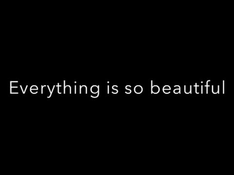 Everything is so beautiful