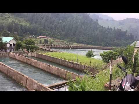 shanan power project