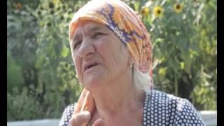 видео Відпочинок в Румунії та Україні, що спільного — Карпати!
