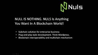 Earning Passive Income Staking NULS - Cryptocurrency Altcoin Review