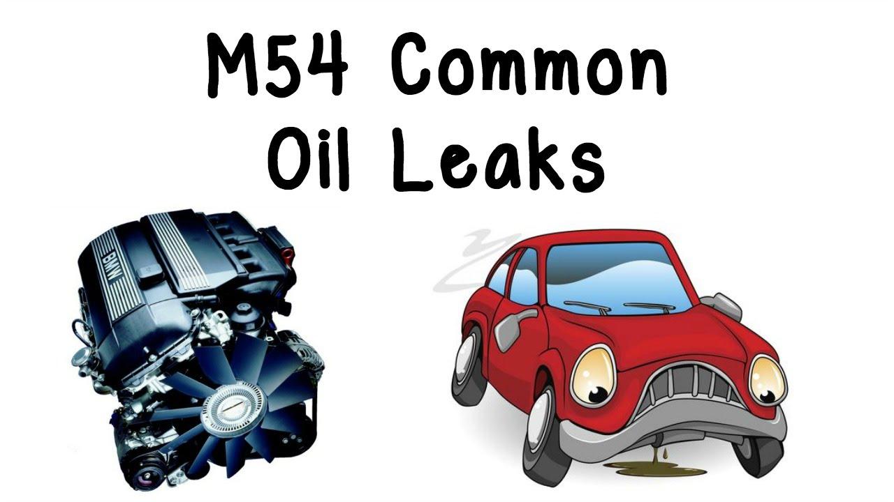 Bmw M54 Common Oil Leaks E46 E39 E60 E83 E85 Youtube