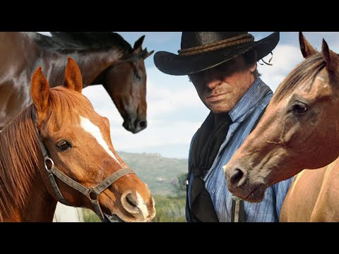 Red Dead 2 Gameplay: Can You Find Every Horse? - Up At Noon Live!