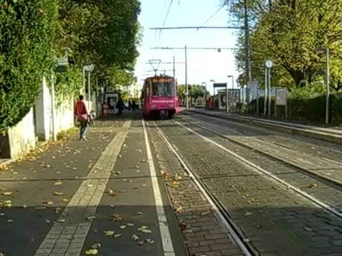 "Trams of Bonn, Germany. Route 66 ""Telecom Express""."