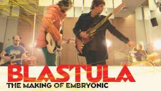 The Flaming Lips - Blastula: The Making of Embryonic - PREVIEW