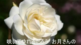芹洋子 - 赤い花白い花