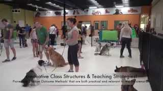 Alpha Dog Training - Huge Indoor Training Facility