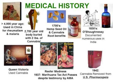 Cannabis Curriculum - Medicinal History, Biology, Chemistry, PTSD