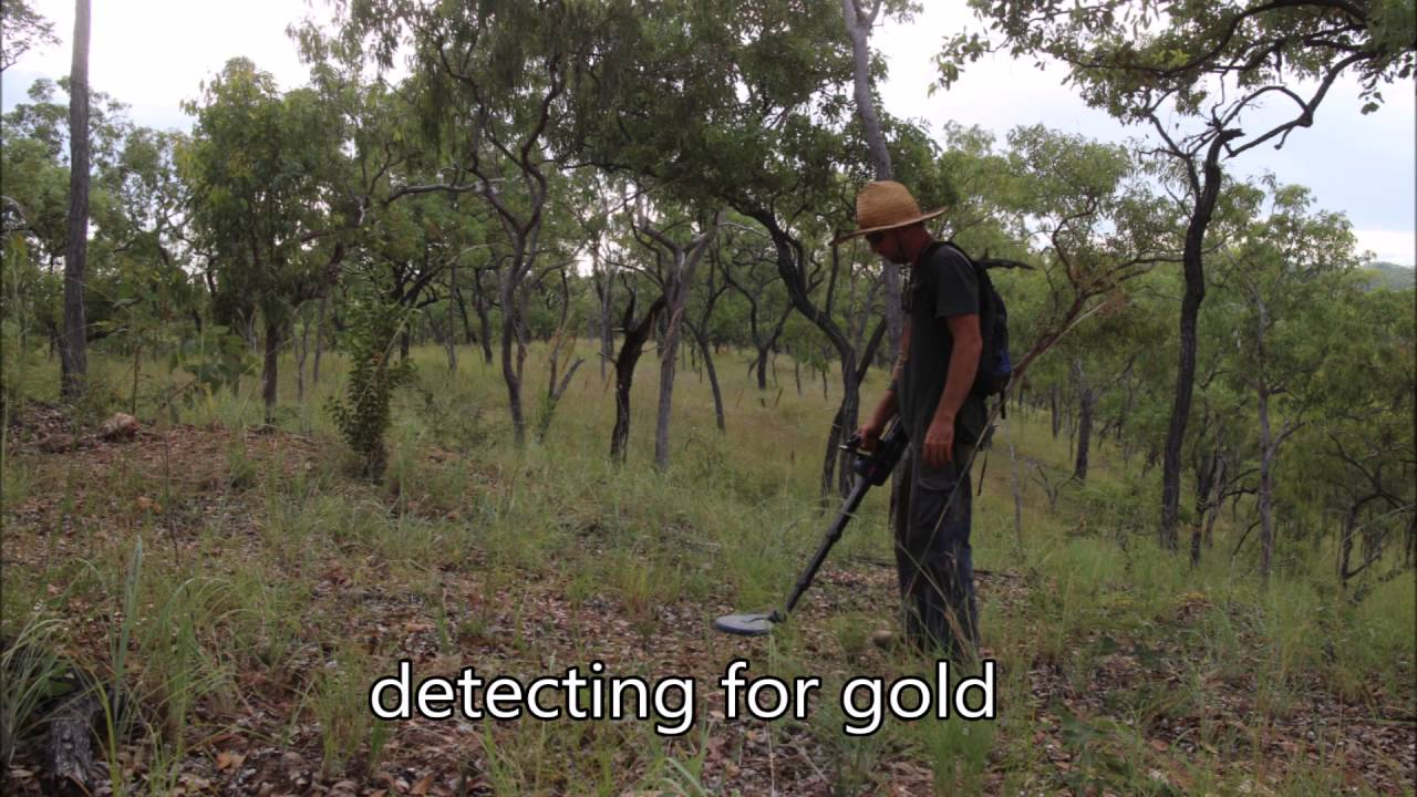 Gold Prospecting Palmer River 2016
