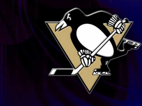 my top 30 favourite NHL teams