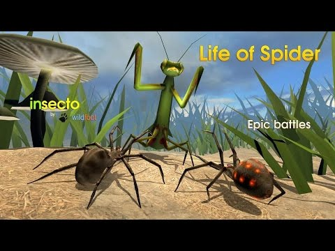 Life of Spider By Wild Foot Games -Boss Battle- Android / iOS - Gameplay