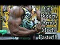 The Perfect Bicep & Tricep Workout For Bigger Arms!!!