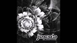 Jacob, Mandrágora - The Perfect Drug