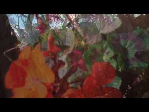 Arcade Fire y Bon Iver se unen a Peter Gabriel en un nuevo disco