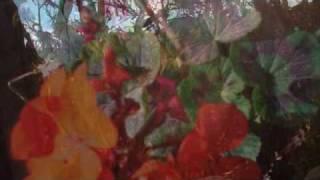 Peter Gabriel - Flume (Bon Iver Cover)
