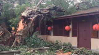 شاهد.. إعصار «ميرانتي» يدمر المواقع الأثرية في الصين