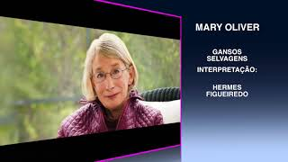 """12 - #Poetry - Mary Oliver - """"Wild Geese"""""""