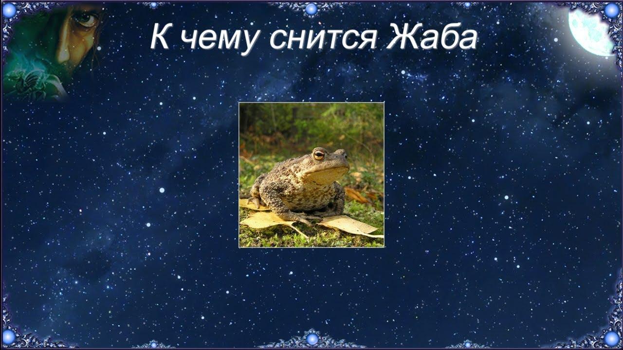 Сказочный сюжет с жабкой, во рту у которой находится стрела, стоит трактовать как предупреждени.