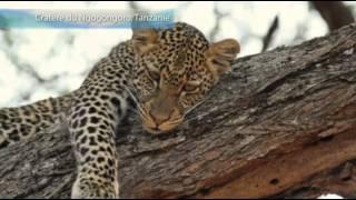Passion Voyage - Kenya, Tanzanie et Zanzibar