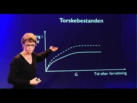 'Store eller små torsk - gør det en forskel? v/ lektor Lone Grønbæk Kronbak