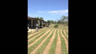 Video3, A&R Wight Excavations,3 Benalla Rd, Oak Valley, QLD, 4816, Australia