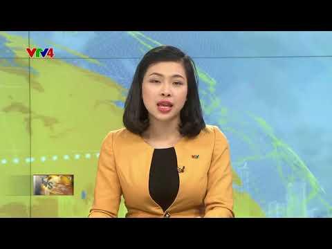 VTV News 15h - 26/02/2018