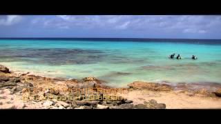 Alice in Wonderland - Bonaire, Dutch Caribbean