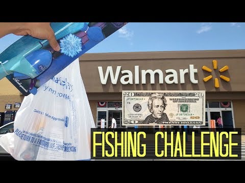 $20 Walmart Fishing Challenge!! (Craziness)