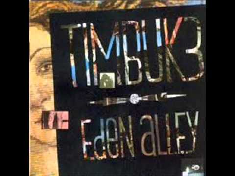 Easy by Timbuk 3