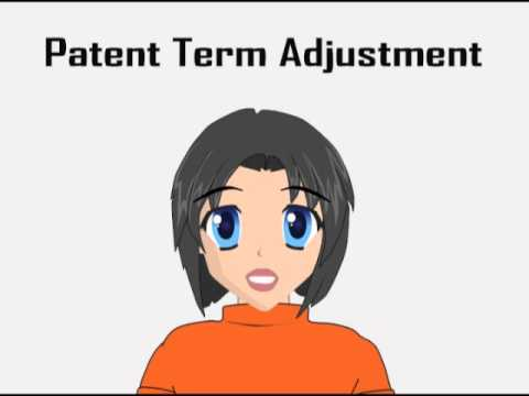 Patent Term Adjustment
