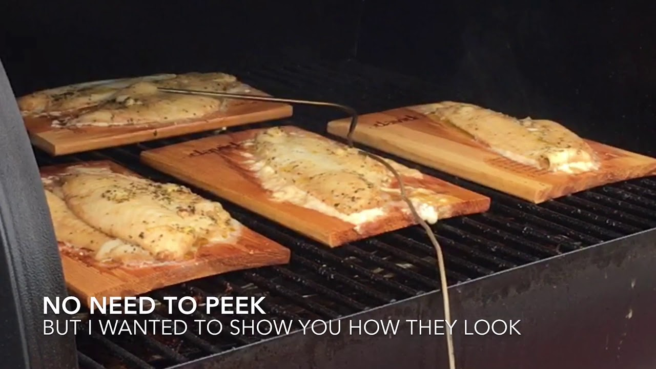 How To Cook Fish On A Traeger Wood Fired Grill Without Flipping Them