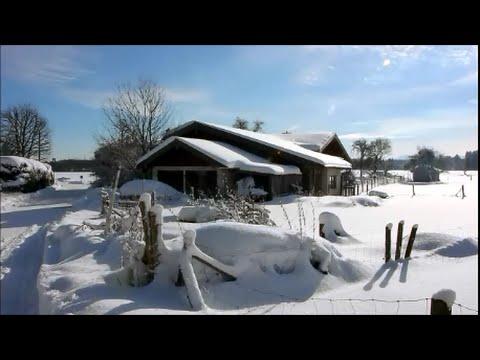 dieses jahr weihnachten leider ohne schnee so sah es im. Black Bedroom Furniture Sets. Home Design Ideas