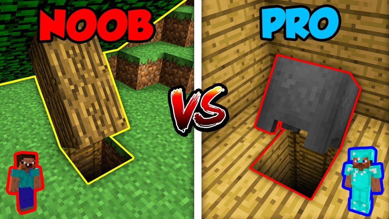 Minecraft NOOB vs. PRO: BASE ENTRANCE!   AVM Shorts Animation